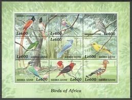PK148 SIERRA LEONE FAUNA BIRDS OF AFRICA 1KB MNH - Oiseaux