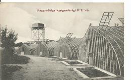 Hongrie ??? Magyar-belga - - Ungheria