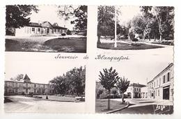 BLANQUEFORT  EN GIRONDE CARTE MULTIVUES  SOUVENIR DE BLANQUEFORT     CPA  CIRCULEE - Blanquefort