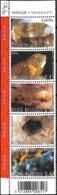 D - [154387]TB//**/Mnh-Belgique 2003 - N° 3174/78, La Bande, Minéraux, Nature, Sc, SNC - Minéraux
