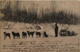 Canada - Yukon // Klondike River // Moose Hunter On Frozen Klondyke River With DoG Sledge And His Catch 1907 RARE C/fold - Yukon