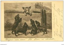 CHIENS.TECKELS.BONJOUR MON VIEUX.CHIOTS SALUANTS UN COCHON - Hunde
