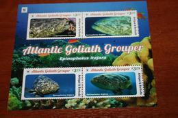 WWF Antigua & Barbuda 2016 Rare Block  Fishes - Sin Clasificación