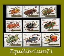 PA120/128** Coléoptères / Kevers / Käfer / Beetles - BURUNDI - Burundi