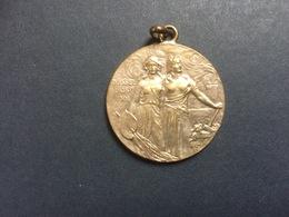 Ancienne Médaille Dusseldorf 1902 Allemagne Exposition Industrielle - Allemagne