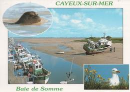 Cayeux Sur Mer Baie De Somme - Cayeux Sur Mer