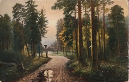 A Forest Path And Gateway - Paintings