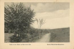 19 ST MERD LES OUSSINES - VALLEE DE LA VEZERE AU BOIS DE LA COTE - France