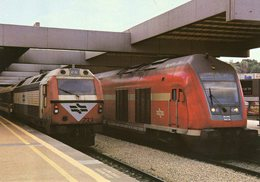 Diesel Trainsets No. 733 And Leading Car Of Israel Railways In Tel-Aviv Central Station In 2007  -  CPM - Trains