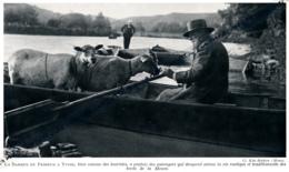 1929 : Photo, Belgique, La Barque Du Passeur à Yvoir, Vie Rustique Et Traditionnelle Des Bords De La Meuse, Moutons - Verzamelingen