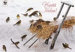 Postal Stationery - Squirrel - Birds - Buntings In Winter Landscape - WWF Panda Logo 2011 - Suomi Finland - Postage Paid - Finlandia
