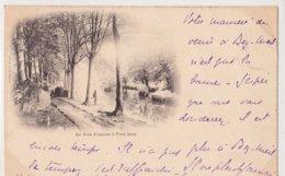 Pont Aven  Rare  Animee  Le Bois D'amour - Pont Aven