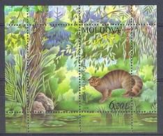 Moldova 2006 Mi Bl 36 MNH ( ZE4 MOLbl36 ) - Felinos
