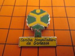520 Pin's Pins / Beau Et Rare  / THEME MEDICAL : CHINOIS GRIMPE DANS UN ARBRE CENTRE HOSPITALIER GONESSE C'est Un HP ? - Medical
