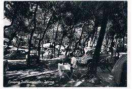 IT-3364   TIRRENIA : Camping Inetrnationale - Interno - Pisa