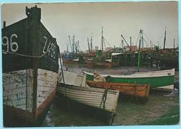 0806 - BELGIE - ZEEBRUGGE - KUISBANK - Zeebrugge