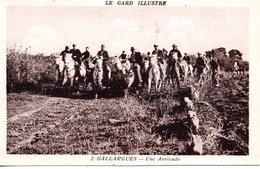 30 GALLARGUES TAUREAUX MANADE ABRIVADO GARD GARDIANS - Gallargues-le-Montueux