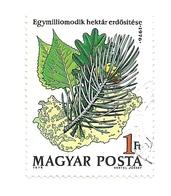 1976 - Ungheria 2530 Rimboschimento - Alberi