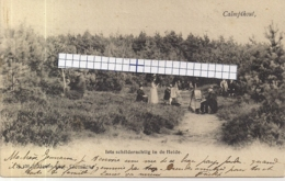 "HEIDE-CALMPTHOUT-KALMTHOUT ""IETS SCHILDERACHTIG IN DE HEIDE-KJUNSTSCHILDERS "" HOELEN 138 16.09.1901TYPE 2 - Kalmthout"