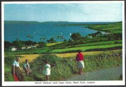 PC  218  Cardall - Schull Harbour And Cape Clear,West Cork,Ireland. Unused - Cork