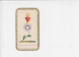 Devotie - Devotion - Voici Ma Fleur Bien Aimée - Images Religieuses