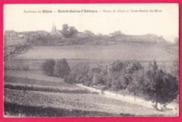 21 - SAINT SEINE L'ABBAYE---Route De Dijon Et Saint Martin Du Port - Otros Municipios