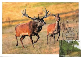 "Portugal 2011 Cerf ""Cervus Elaphus"" Timbre Europa Maxicard Carte Maximum - Gibier"