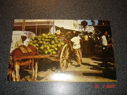 TRINIDAD ET TOBAGO  CARTE POSTALE ECRITE ET TIMBREE DE PORT OF SPAIN   VENDEUR DE NOIX DE COCO - Trinidad