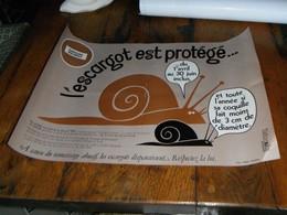 Affiche Réglementation Ramassage Des Escargots - Posters