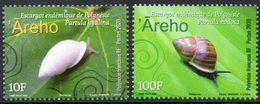 Polynésie Française 2020 - Faune, Escargots De Polynésie - 2 Val Neufs // Mnh - French Polynesia