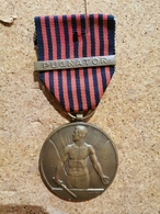 """Belgique Médaille : Médaille Des Volontaires Belges Avec La Barrette """"pugnator"""" En Bronze - België"""