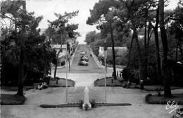 Le Moulleau * * La Promenade * Bassin D'arcachon - France