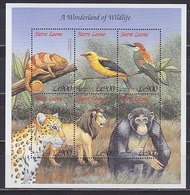 Sierra Leone, 1999, Fauna, Birds Lions Sheet - Other
