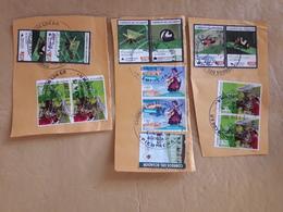 Équateur Fragments Avec Des Tampons D'insectes Et Autres - Equateur