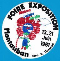 AUTOCOLLANT FOIRE EXPOSITION JUIN 1981 MONTAUBAN TARN & GARONNE MAISON LOISIRS JARDIN - Aufkleber