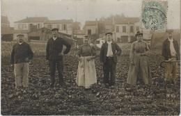 Métiers - MARAICHERS - CARTE PHOTO Famille Blancheteau - La Garenne, Bobigny ? - Circulé 1906 - TBE - Professions