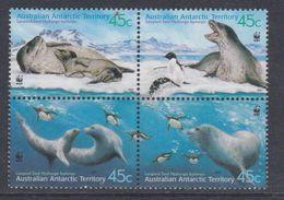 Antarctique Australien N° 145 / 48 XX Faune : Léopard De Mer, Les 4 Valeurs En Bloc De 4 Sans Charnière TB - Neufs