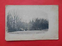 Minsk 1900th City Garden Russian Postcard - Wit-Rusland
