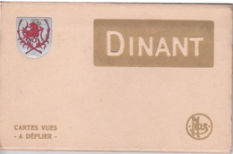 BELGIQUE - NAMUR - DINANT - CARNET COMPLET DE 10 CPA  - - Dinant