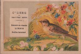 LIEBIG FIGURINA - Other
