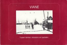 """Viane - In Oude Prentkaarten -Tussen Kerke""""n - Kloosters En Kastelen  Uitg. Vanden Herrewegen - Bockstaele En De Cock - Geraardsbergen"""