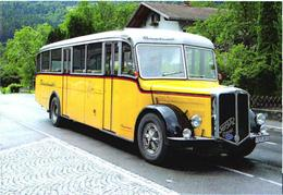 Old Bus FBW - Busse & Reisebusse