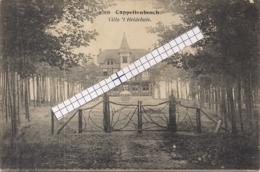 """CAPPELLENBOSCH-KAPELLEN""""VILLA HEIDEHUIS""""HOELEN 8306 UITGIFTE 1920 - Kapellen"""