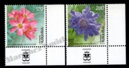 Armenia - Arménie 2008 Yvert 576-77, Flora. Flowers, Narcissus Anemone & Pincushion Flower - Corner Border - MNH - Arménie