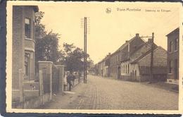 VIANE-MOERBEKE - Steenweg Op Edingen - Geraardsbergen