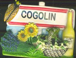 MAGNET COGOLIN - Magnets