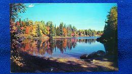 Fall Scene In Algonquin Park Ontario Canada - Ontario