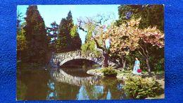 Bridge In Beacon Hill Park Victoria B. C. Canada - Victoria