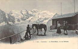 74 HAUTE SAVOIE Une Mule Au Refuge Du Brévent Au Dessus De CHAMONIX Carte Précurseur - Chamonix-Mont-Blanc