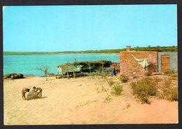 - Espagne - Formentera - Plage Mitjorn ( Postée En 1963 ) - Formentera